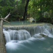 En sildrende, bred bekk i regnskogen