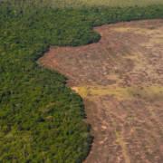 Flyfoto av soyaplantasjer i Brasil.