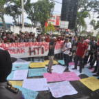 Timber plantation licenses on Mentawai cancelled