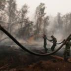 Gigantisk oljefond-investert selskap har ikke kontroll på branner i Indonesia
