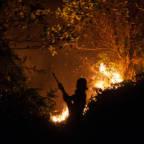 Massive fires on the concessions of Indonesia's second biggest palm oil producer