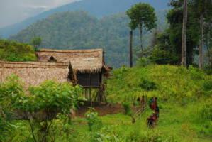 Et lite landsbyhus i et frodig, grønt landskap.