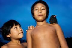 To indianerbarn av stammen waiapi, ett med sort fugl med gult nebb på skulderen