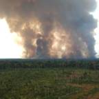 Strong increase in fires despite fire bans