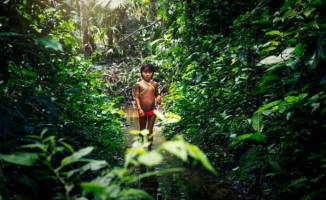 A call to protect and support rainforest peoples from COVID-19