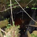 Unntakstilstand i Amazonas på grunn av oljeutslipp
