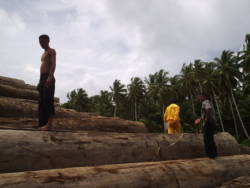 Tre menn står på en stabel med tømmerstokker
