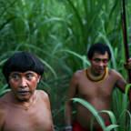 To indianermenn i Brasil står i en eng med høy gress.