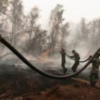 Militæret prøver å slukke skogbrann i Indonesia