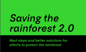 New ideas for better rainforest protection