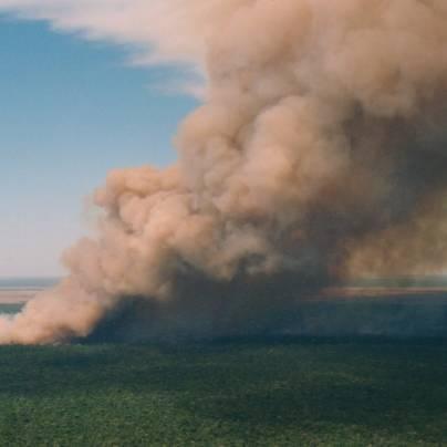 Skogbrann fotografert fra fly, høy røyksøyle mot himmelen