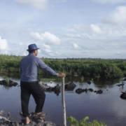 En mann står og ser utover et landområde hvor det en gang sto frodig regnskog.