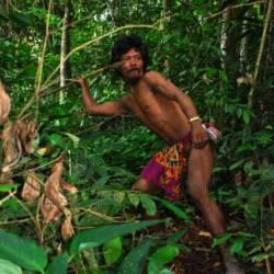 Orang rimba-mann på jakt kaster et spyd