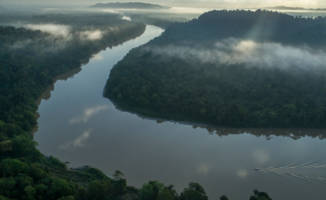 Press release: Breakthrough for Indonesia's rainforests