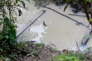 Forurenset drikkevann i regnskogen
